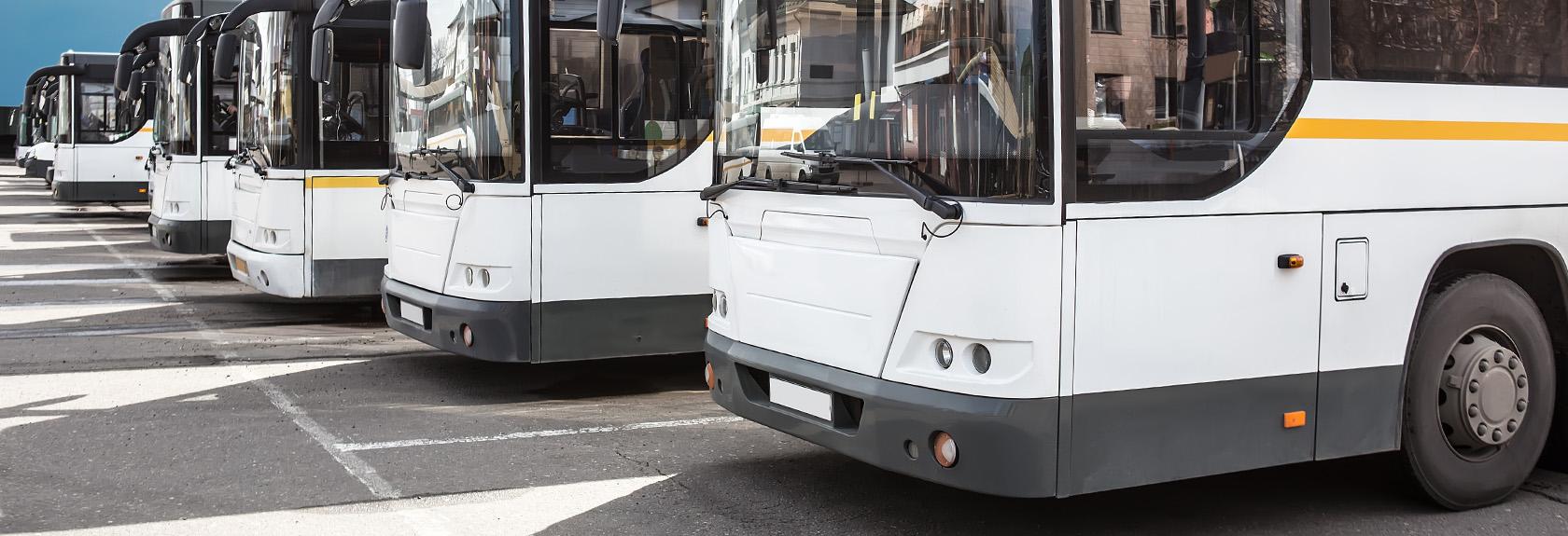 Bus transfer Luton Airport – Londen Centrum