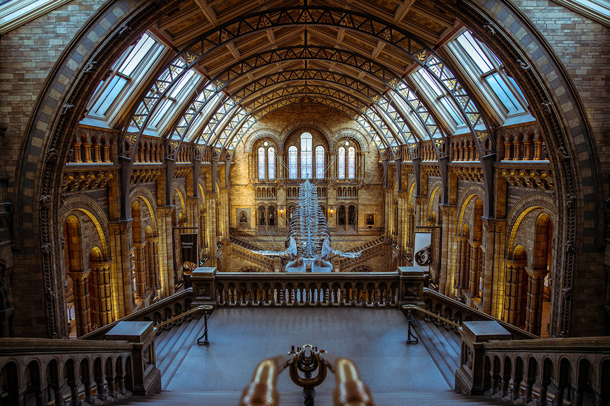Natural History Museum in Londen